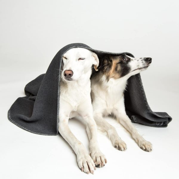 Cloud7-Dog-Blanket-Fleece-Dark-Gray
